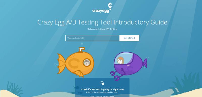 تست a/b crazy egg