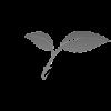 bitkiteb logo
