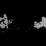 carnicairan logo