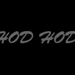 hodhodtoybox logo